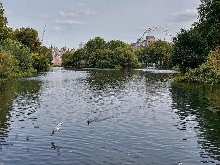 St James Park 3
